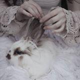 Profilbild von Viviane-Adamczyk
